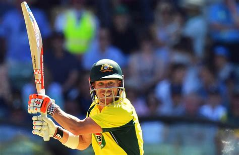 big bats   banned   mcc rules cricketcomau