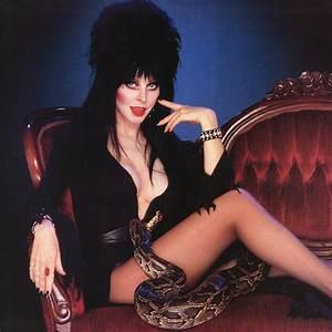 Elvira images Elvira HD wallpaper and background photos (16711828)