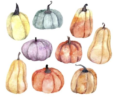 watercolor pumpkins wall decal wall decals  white