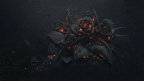 HD wallpaper: Flowers, Rose, Fire, Gothic | Wallpaper Flare