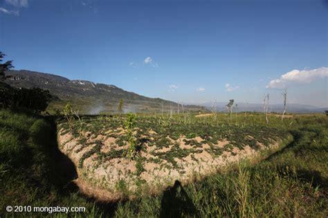 laporan ketahanan pangan pertanian berkelanjutan