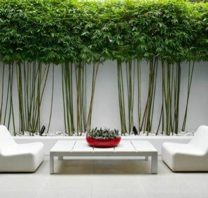 Gartengestaltung Sichtschutz Beispiele by 103 Beispiele F 252 R Moderne Gartengestaltung