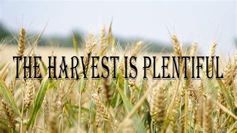 The Harvest is Plentiful - YouTube