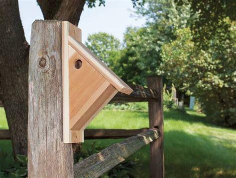 chickadee nesting box empress dirt