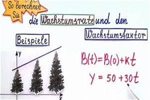Exponentielles Wachstum Berechnen : exponentielles wachstum am beispiel erkl rt ~ Themetempest.com Abrechnung