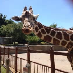Evansville Indiana Mesker Park Zoo