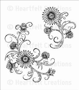 1000+ ideas about Aster Flower Tattoos on Pinterest ...