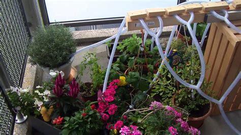 Pflanzen Automatisch Gießen pflanzen automatisch giessen