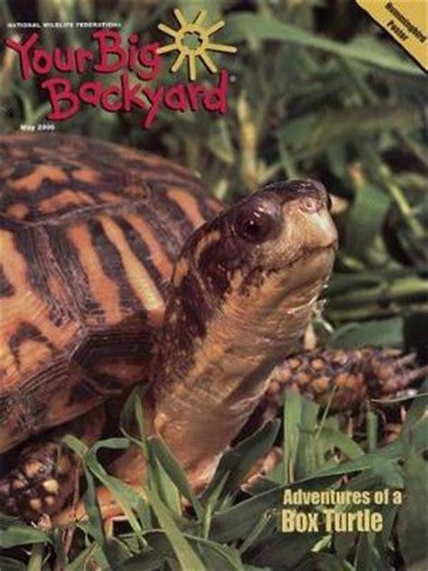 big backyard magazine  subscription deal