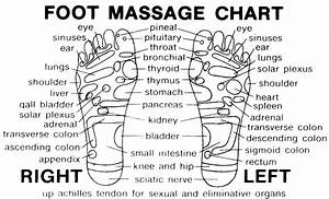 Full Foot Reflexology Charts Printable