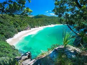 Best Beaches North Island New Zealand