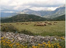 Albania Familypedia Wikia
