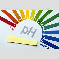 What Are Alkaline Supplements?