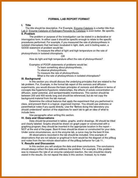 informal report sample imageresume
