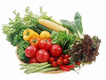 Vegetable Transparent Vegetables Veggies Vegtables Fruits Vegan