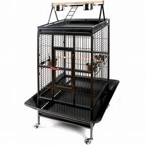 Cage A Perroquet : cage perroquet gm animalerie en ligne ~ Teatrodelosmanantiales.com Idées de Décoration