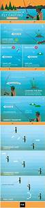 1000  Images About All Things Fishing On Pinterest