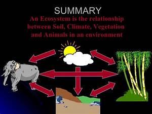 Lesson 1 Ecosystems