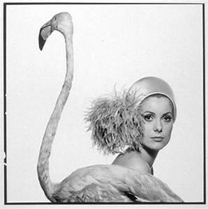 real life is elsewhere: la femmes de david bailey ...
