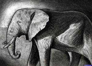 How to Sketch an Elephant, African Elephant, Step by Step ...
