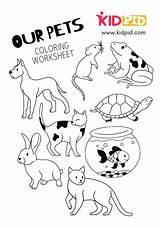 Coloring Pets Printable Worksheet Worksheets Kidpid Templates Aquarium Canva Fish Load sketch template