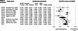 Metaanalysis For The Effect Estimate Of Supervised