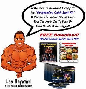 Bodybuilding Guide Download Free  U2013 Bodybuilding And