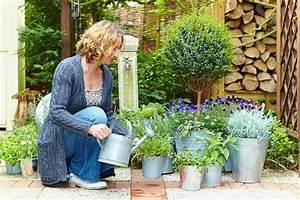 Wasseraufbereitung Für Zu Hause : gartentipps urlaubsstimmung f r zu hause ~ Michelbontemps.com Haus und Dekorationen