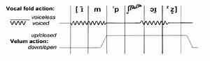 Class Demonstration Of A Summative Parametric Diagram Of