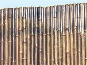 Bambou Noir Prix : cl tures bambou noir ~ Teatrodelosmanantiales.com Idées de Décoration