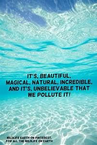 The ocean is sl... Beach Pollution Quotes