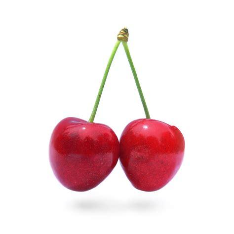 cuisine cerise file cherry stella444 jpg wikimedia commons