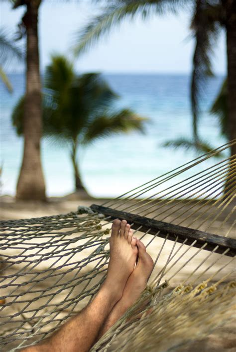 Relaxing On Hammock by Free Stock Photo Of Relaxing In A Hammock