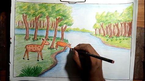 draw forest scenery  animals step  step