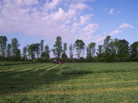 lanark county plowing match lanark county tourism
