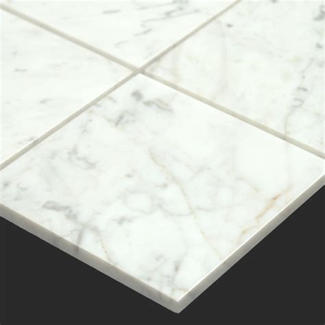 Carrara Marble Tile Floor by Bianco Carrara White Marble 6x6 Tile Modern