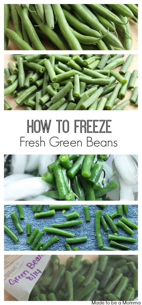 how to blanch and freeze green beans 25 best ideas about katie green on pinterest fashion