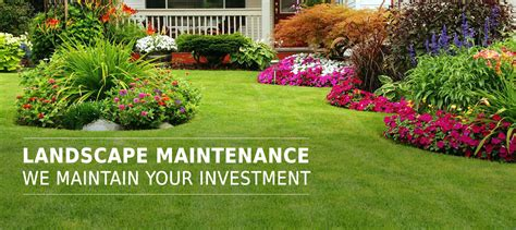 lanscaping pictures home absolute landscaping