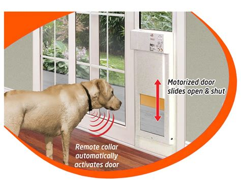 Extra Large Dog Door For Sliding Glass With Doggie Built