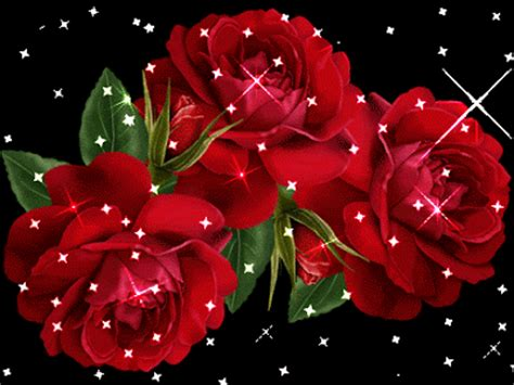 Animated Roses Wallpaper - free hd wallpapers animated photos hd