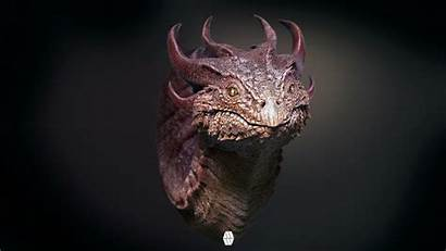 Artstation Bust Whinney Marcus Dragon Zbrush Concept