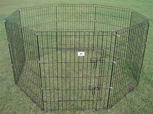 portable fencing for dogs and 5 main topics you must know