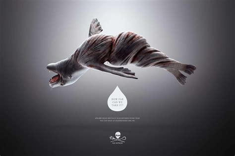 top ads animal rights brand sea shepherd ad twisted