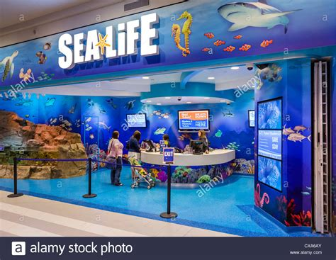ticket desk at the sea aquarium in the mall of