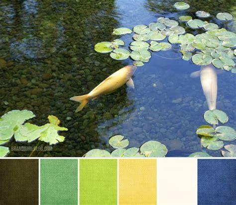 color palette  koi pond color palettes