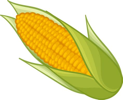 Corn Clip Corn Png Transparent Free Images Png Only