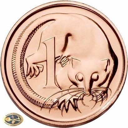 Cent Coin 1c Australian Cents Dollars Coins