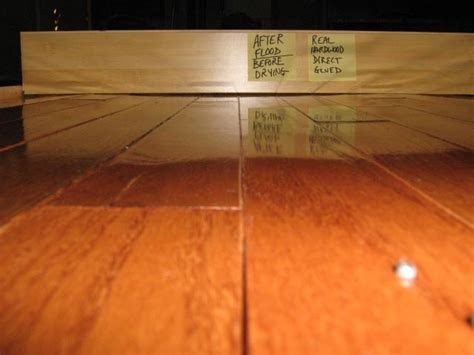 how do you clean real hardwood floors restoration sciences academy professional training for the restoration and cleaning industries