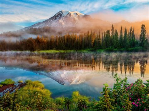 mount rainier national park trails desktop wallpaper hd