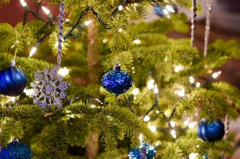 live christmas tree safety tips
